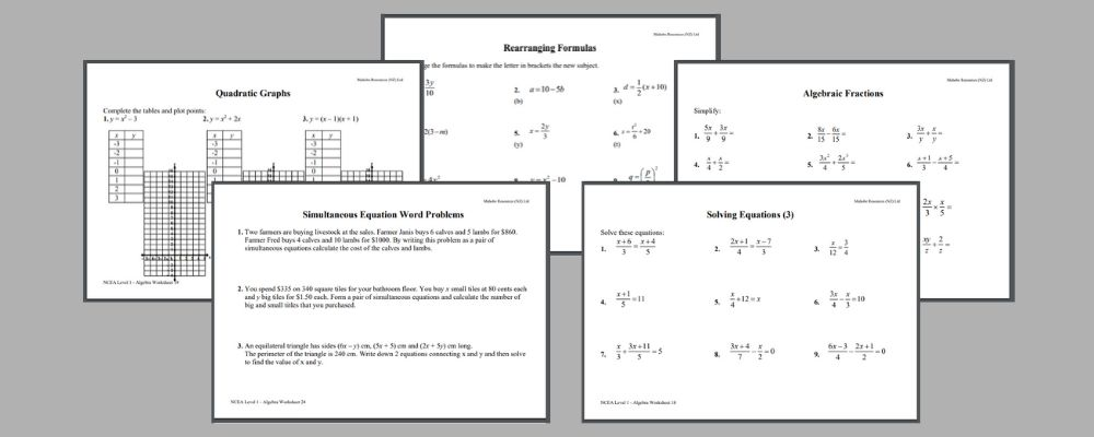 NCEA Level 2 maths algebra revision